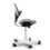 HÅG Capisco Puls 8010 ergonomic office chair