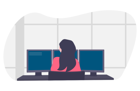 Online DSE assessments