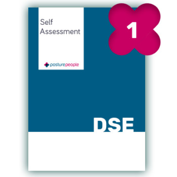 online dse self assessment, paperless, workstation assessment