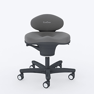 Core chair, exercise ball chair, core, office chair