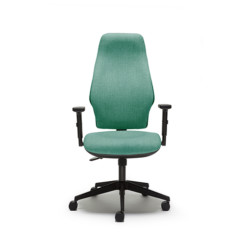 Torasen Orthopaedica 300 ergonomic chair with high back